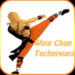 Wing chun techniques icon